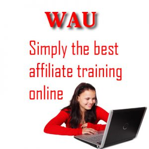 SIMPLY THE BEST AFFILIATE TRAINING Image